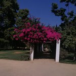 Фотография Парк Марии-Луизы