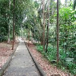 Sandakan Memorial Park - impressive walking paths