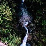 صورة فوتوغرافية لـ Lynn Canyon Park
