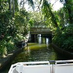 Tour boat approaching bridge over canal