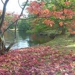 Foto de Japanese Garden