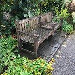 Bilde fra Rothe House and Garden