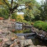 ภาพถ่ายของ Vermanes Garden