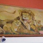 Foto di New Safari