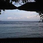 View from our fale at Tisa's