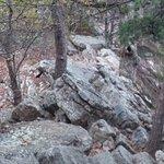 One of rock formations you must traverse on Massanutten Ridge Trail
