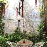 Bilde fra The Baboon House