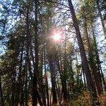 Foto de Centennial Trail