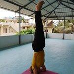 Bilde fra Elephant Yoga Centre