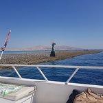 Photo of Tiran Island