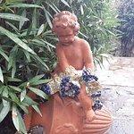 Foto di Giardini Poseidon Terme