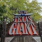 Billede af Six Flags Over Texas