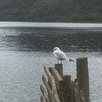 Фотография Bassenthwaite Lake
