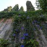 Photo of Generalife