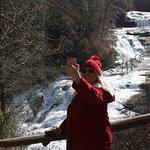 Bilde fra DuPont State Recreational Forest