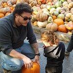 Valokuva: Bengtson's Pumpkin Farm