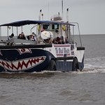 Searles Sea Tours
