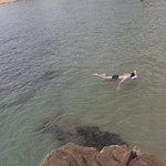 Praticar snorkeling vale a pena!