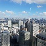 Tokyo Metropolitan Government Buildings Observatories