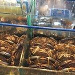 Isla Sugbu Seafood Cityの写真