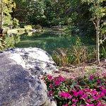 صورة فوتوغرافية لـ Edith J. Carrier Arboretum