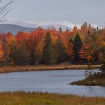 Acadia National Park is a wonderful experience of all the senses. Sights, sounds, smells, tastes
