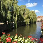 canal and flowers