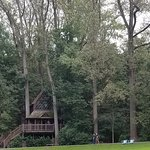 Canopy Cathedral Treehouse