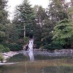 Carillon and waterfall