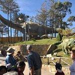 Foto de Parque Cretácico