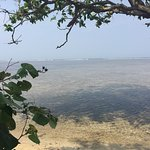 Photo de Ujung Genteng Beach