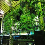 MyWarung Pasar Petitenget照片