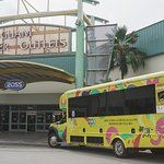 GPO's free shuttle provides a direct ride to Tumon Sands Plaza, located at Ross entrance.