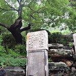 ภาพถ่ายของ สวนจิงซาน