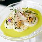 A seasonal scallop dish (353129159)