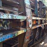 Φωτογραφία: The Whistler Train Wreck Trail