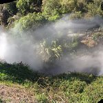 Φωτογραφία: Waikite Valley Thermal Pools