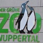 """Der """"grüne Zoo""""?"""