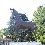 Photo de Leonardo da Vinci's Horse