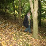 the dodgy woodland steps
