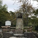 天龍寺照片