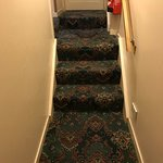 Snazzy carpets