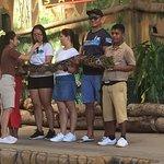 Photo of Zoobic Safari