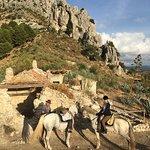Photo of Horse Riding El Chorro