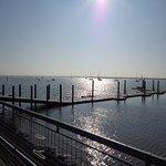 Waterfront照片