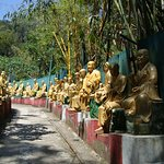 صورة فوتوغرافية لـ ‪Ten Thousand Buddhas Monastery (Man Fat Sze)‬
