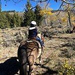 Daughter's first horseback ride