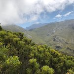 Mont Rochelle Nature Reserve resmi