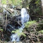 Doyles River Falls照片