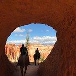 Foto van Canyon Trail Rides